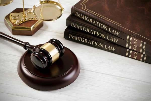Immigration Law Firm Marketing